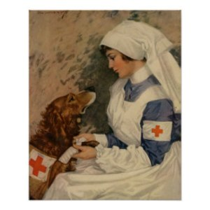 vintage_army_nurse_with_golden_retriever_ww1_poster-r0d2841c405b8432ab00c14f5965c0b2b_wvc_8byvr_324